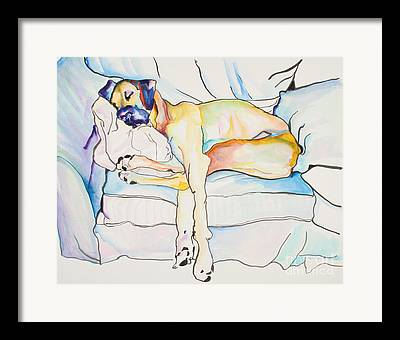 Sleeping Dog Framed Prints