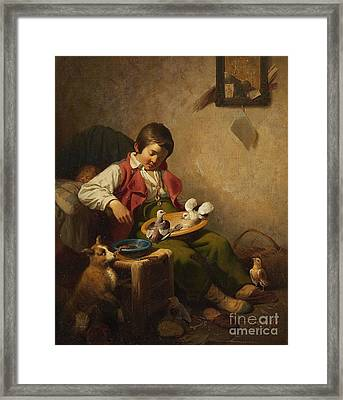 Sleeping Boy With Pidgeons And Dog Framed Print by Celestial Images