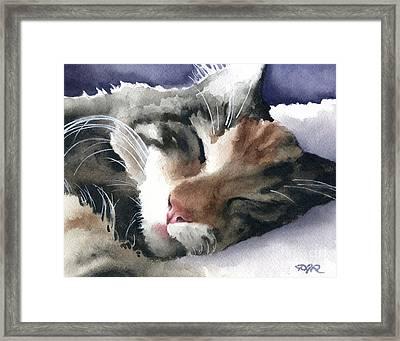 Sleeping Cat Framed Print by David Rogers