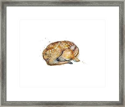 Sleeping Fawn Framed Print by Amy Hamilton