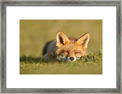 Sleeping Fox Kit Framed Print by Roeselien Raimond