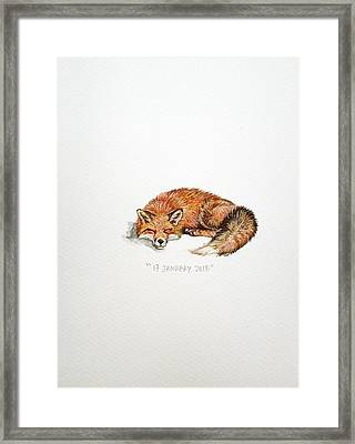 Sleeping Fox Framed Print by Venie Tee