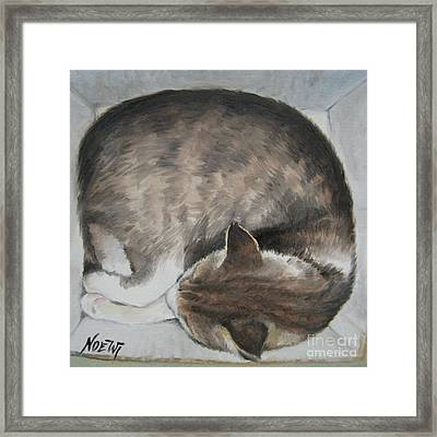 Sleeping Kitty Framed Print by Jindra Noewi