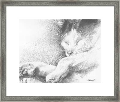 Sleeping Sadie Framed Print