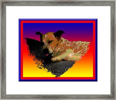 Sleeping Soundly Framed Print by One Rude Dawg Orcutt