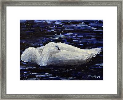 Sleeping Swan Framed Print