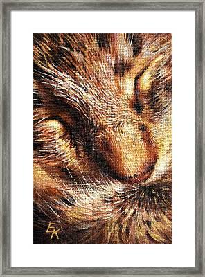 Sleeping Tabby Framed Print by Elena Kolotusha