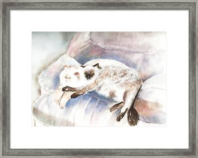 Sleeping Together Framed Print by Arline Wagner