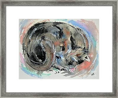 Framed Print featuring the painting Sleeping Tortoiseshell Cat by Zaira Dzhaubaeva