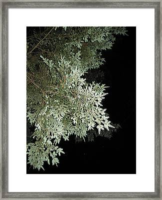 Sleepless Night Framed Print by Lali Partsvania