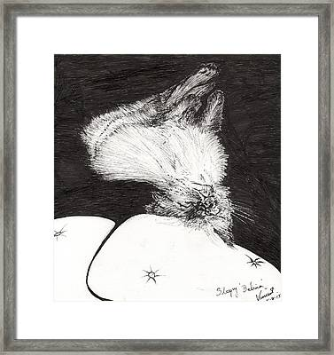 Sleepy Belina Framed Print