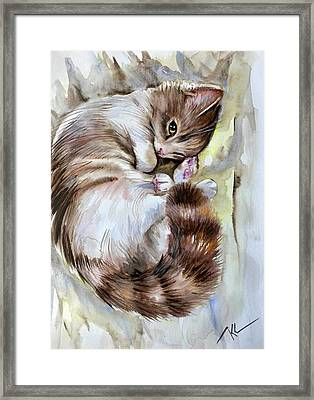 Sleepy Cat 2 Framed Print