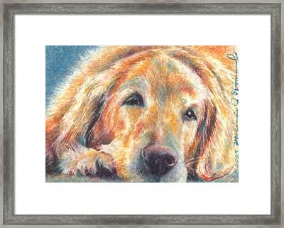 Sleepy Dog Framed Print by Melissa J Szymanski