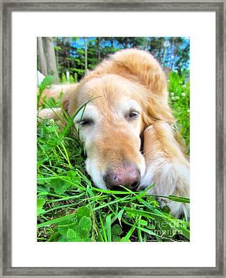 Sleepy Girl Framed Print