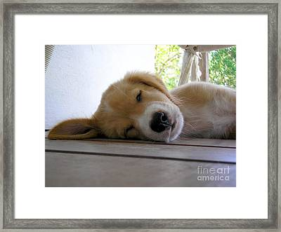 Sleepy Jojo Framed Print by Barbara Marcus