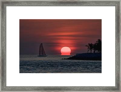 Sleepy Sun Framed Print