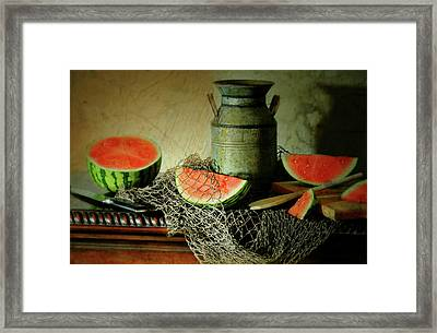 Slice Of Life Framed Print by Diana Angstadt