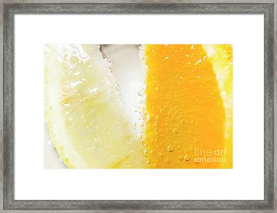 Slice Of Orange And Lemon In Cocktail Glass Framed Print