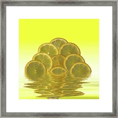 Slices Lemon Citrus Fruit Framed Print by David French