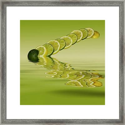 Framed Print featuring the photograph Slices Lemon Lime Citrus Fruit by David French
