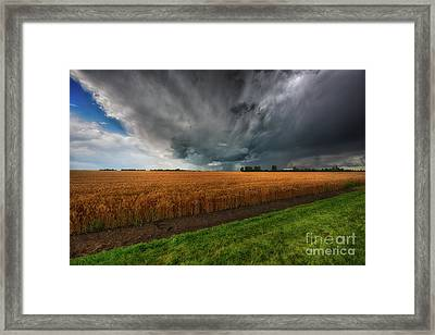 Slices Of Saskatchewan Framed Print by Ian McGregor