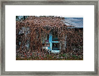 Slightly Overgrown Framed Print by Christopher Holmes