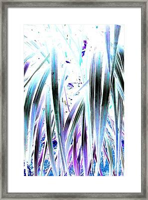 Slink Framed Print