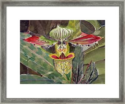 Framed Print featuring the painting Slipper Foot Aladdin by Mindy Newman