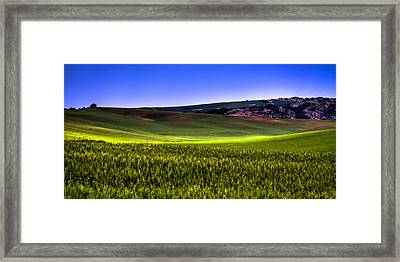 Sliver Of Sunlight On The Palouse Hills Framed Print by David Patterson