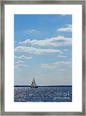 Sloop Sailing On The Harbor Framed Print by Dustin K Ryan