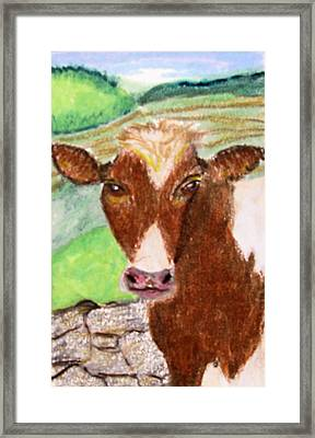 Framed Print featuring the drawing Slopoke by Barbara Giordano