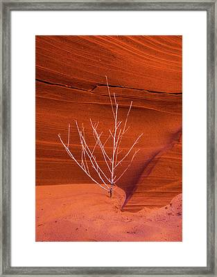 Slot Canyon Sentinel Framed Print