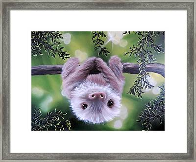 Sloth'n 'around Framed Print