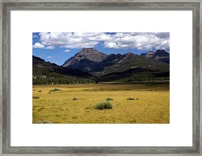 Slough Cree Vista Framed Print by Marty Koch