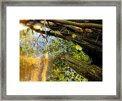 Slow Creek Framed Print