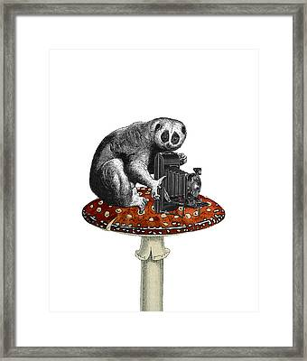 Slow Loris With Antique Camera Framed Print