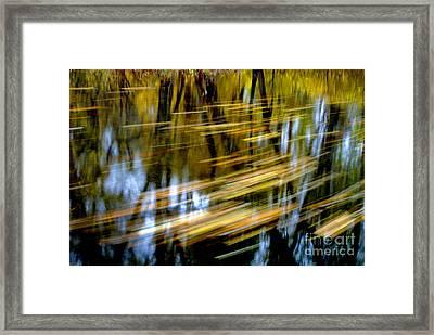Slow Moving Stream - 2959 Framed Print