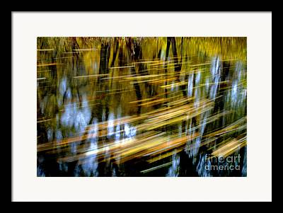 Reflection Of Trees In Stream Framed Prints