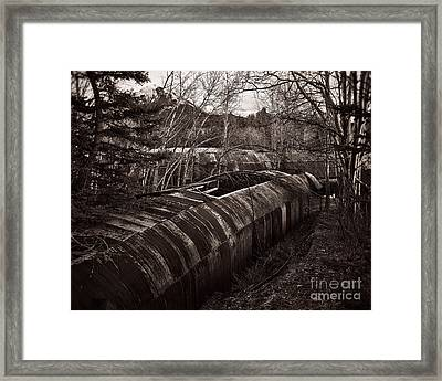 Slow Reclamation Framed Print by Royce Howland