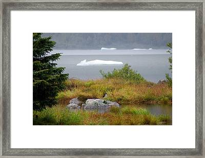 Slowly Floating By Framed Print