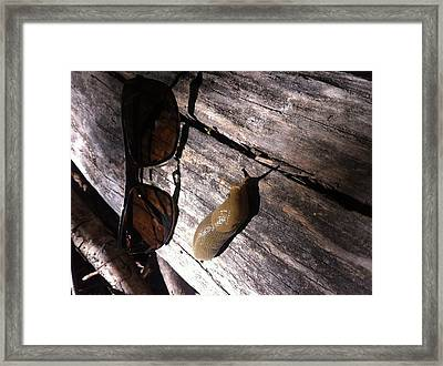Slug Is Chillin Framed Print