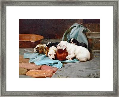 Slumber  Framed Print by MotionAge Designs