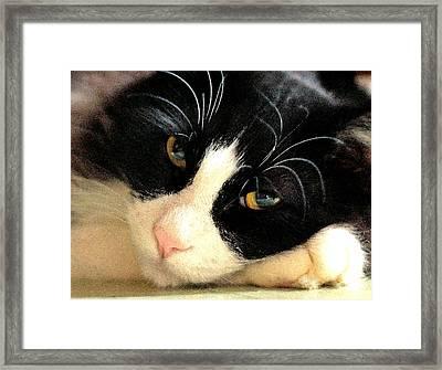 Slumbering Samson Framed Print