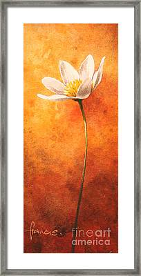 Small Anemone Framed Print