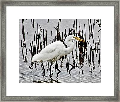 Small Catch Framed Print