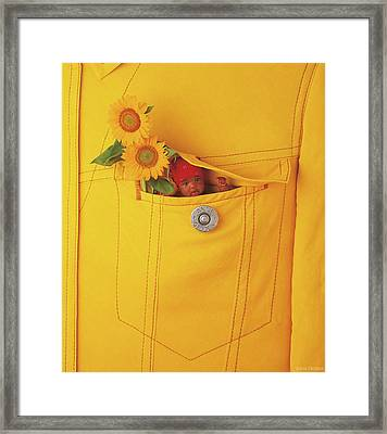 Small Change Framed Print by Anne Geddes