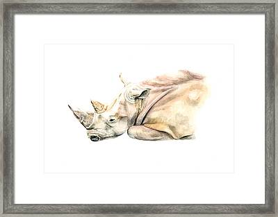 Small Colour Rhino Framed Print by Elizabeth Lock