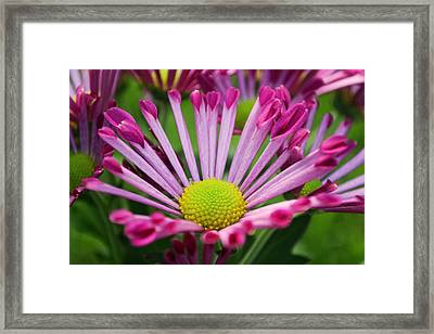 Small Faith Framed Print