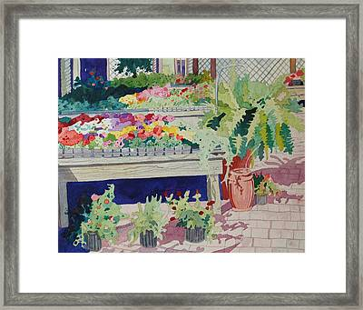 Small Garden Scene Framed Print by Terry Holliday