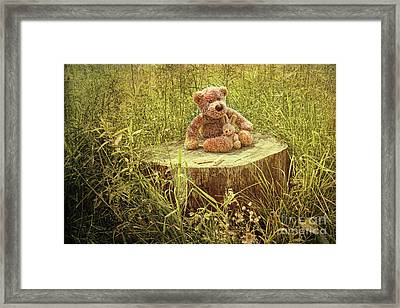 Small Little Bears On Old Wooden Stump  Framed Print